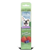 Clean Teeth Oral Care Gel Berry Fresh