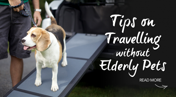 Holidaying without your Elderly Pets